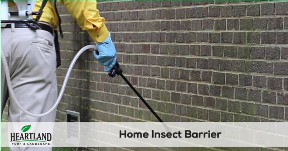 HOME INSECT BARRIER SERVICE 4
