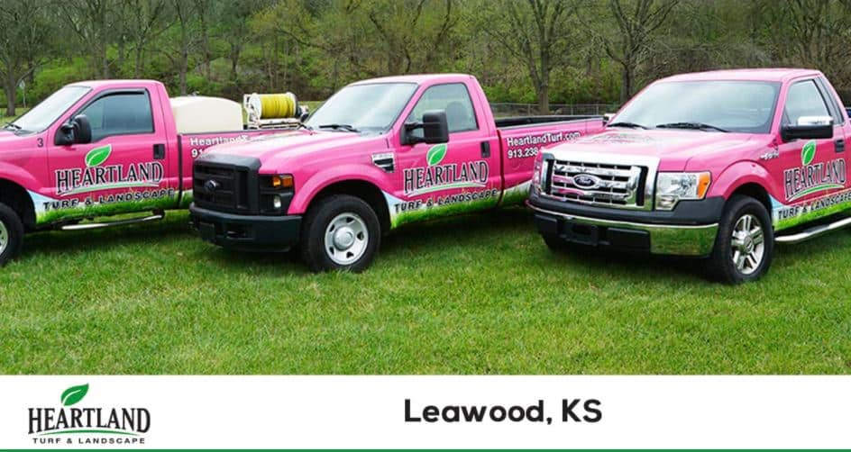 LEAWOOD LAWN CARE AND PEST CONTROL