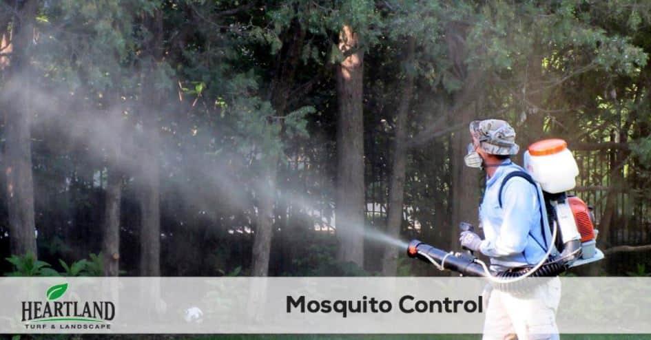 MOSQUITO PEST CONTROL SERVICE 4