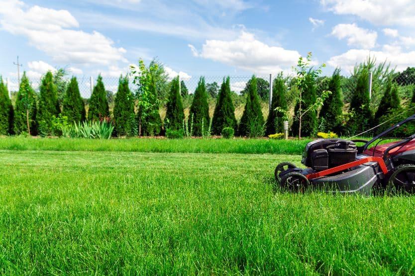 Heartland lawn mowing service 2