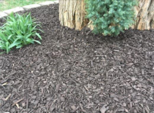mulch installation service 7