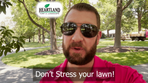 Don't stress your lawn with the wrong fertilizer!