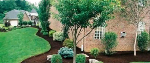 yard and garden maintenance
