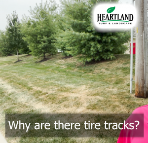 Why you may be seeing tire tracks after a summer mow